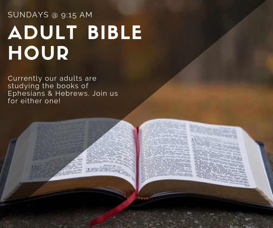 Adult Bible hour