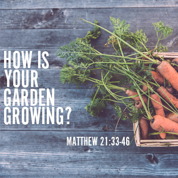 How Is your Garden Growing Sermon